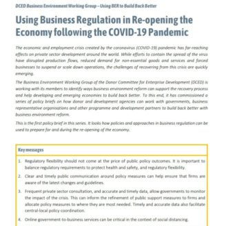 BER and COVID policy brief 1