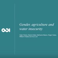 Women water and farming
